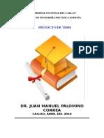 PROY.TESIS.APUNTES.  Dr.Palomino.doc