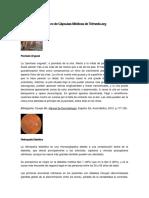 Archivo de Cápsulas Médicas de Telmeds