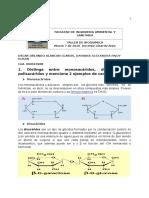 Taller Carbohidratos  (bioquimica)