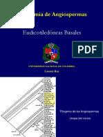 Eudicots Clase 1 II-2011_copy