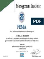 fema certificate 2