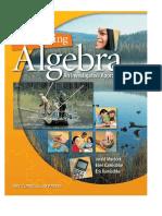 Discovering Algebra - Jerald Murdock, Ellen Kamischke, Eric Kamischke