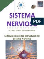 sistema_nervioso_abril_2010