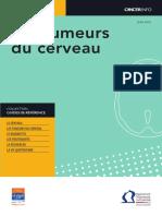 Guide Tumeurs Du Cerveau