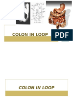 Radiologi Colon in loop