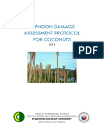 Proposed PCA Typhoon Damage Assessement Protocol for Coconuts v5
