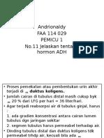 P1 No.11 Hormon ADH