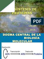 Sintesis de Proteinas 2015