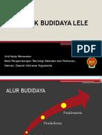 Teknik Budidaya Lele
