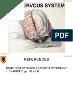 1018 Nervous System.ppt
