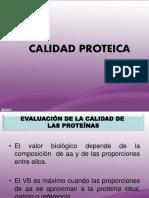Mejora de La Calidad Proteica Modificado FINAL 2015 Unlam (2)