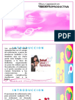 salud reproductiva.pptx