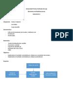 Informe Rf 1