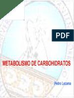 2. Metabolismo de Carbohidratos 2
