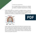 Toracotomía y Lavado Peritoneal