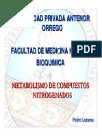 Metabolismo de Las Bases Nitrogenadas 2009