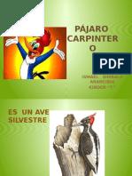 Disertacionismaelpajarocarpintero 141015080542 Conversion Gate01