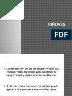 rinones