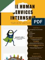 sreed internship e-portfolio presentation