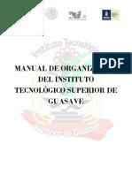 Manual de Organizacion Itsg