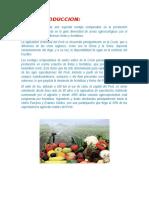 Situacion de La Produccion Regional de Frutas y Hortalizas Como Alimento
