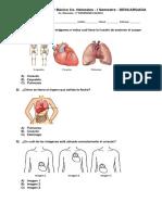 Ciencias in 2°.pdf