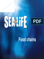eeu 220 foodchains grades3-6 powerpoint