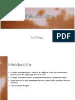 Vitiligo en el pene