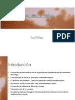 Trisoralen y vitiligo