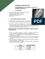 HORMONA ADRENALINA..doc