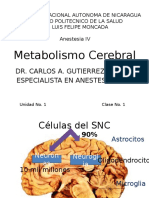 Metabolismo cerebral.pptx