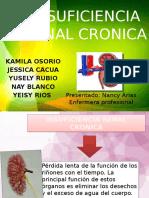 ircdiapositivas-110423014133-phpapp01