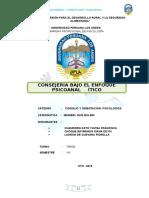 Monografia-de-Consejeria-Por-Psicoanalisis.doc