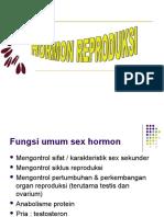 Endokrin Ok