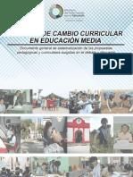 Proceso de Cambio Curricular-educ MediaDEFINITIVO