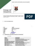 PLAN DE GESTION DE RIESGO IEMSDAV