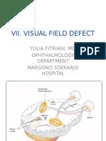 Visual Field Defect