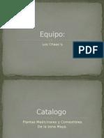 Catalogo Plantas Mayas