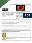 4  PREPARACIÓN DE MEDIOS DE CULTIVO SÓLIDOS.doc