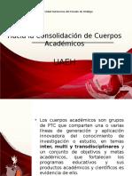Cuerpos Acadeemicos CUMex