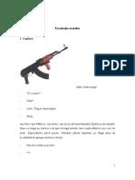 Fascinaţia armelor