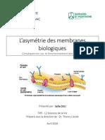 L'asymétrie des membranes biologiques