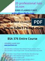 BSA 376 AID Professional Tutor Bsa376aid.com
