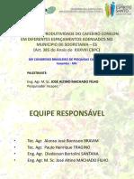 8 Apresentação 385 SBPC