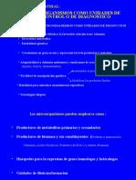 01 - Microbiologia Industrial-Temas y Contenidos