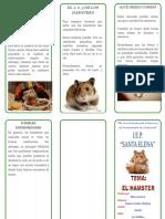 El Hamster SU VIDA