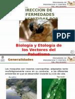 Paludismo Biologia y Etologia Del Vector 2015