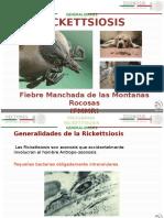 Generalidades  Rickettsiosis