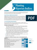 Planting Riparian Buffers