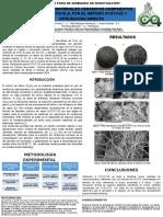 Cartel Cientifico ejemplo sobre metalurgia de los materiales